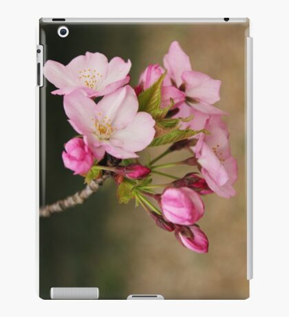 Cherry Blossoms: Pretty in Pink iPad Case/Skin