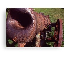 Old Cannon at the Park Canvas Print