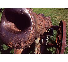 Old Cannon at the Park Photographic Print
