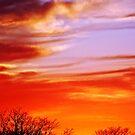 """""""Winter Sunset"""" by Anthony Cherubino"""