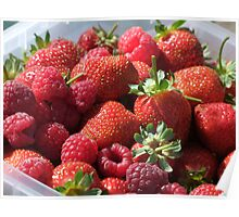 Pick Your Own - Berry Farm Poster