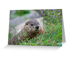 I Celebrate Earth Day, every day Greeting Card