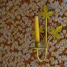 Wall Flower by PoeticSilence