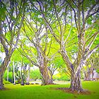 Trees in my Neighborhood by dez7