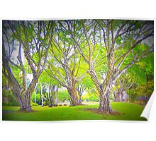 Trees in my Neighborhood Poster