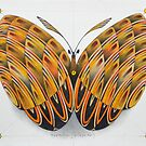 butterfly by federico cortese