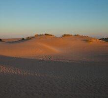 Sand # 2 by sedge808