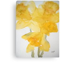 Awash with Daffs Canvas Print