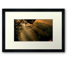 Sunrays Framed Print