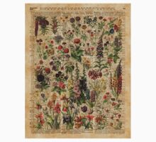 Colourful Wild Meadow Flowers Over Vintage Dictionary Book Page Baby Tee