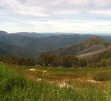 high country by FionaLou