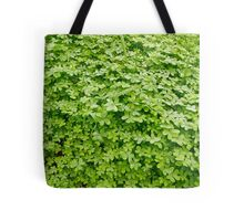 Fresh green clover. Tote Bag