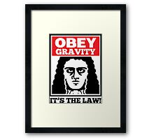 Obey The Gravity Its The Law Framed Print