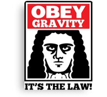 Obey The Gravity Its The Law Canvas Print