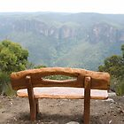 The Viewing Seat, Anvil Rock, Blue Mountains, NSW by Adrian Paul