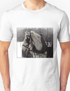 The Draft Horse T-Shirt