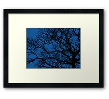 tree sihouette on royal blue night sky Framed Print