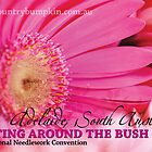 BATB 2012 - Pink Gerbera by georgiegirl