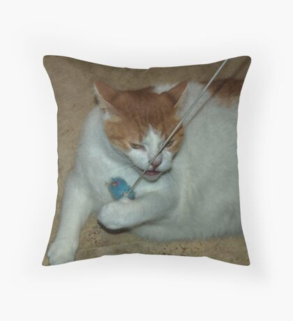 Science Experiment Throw Pillow