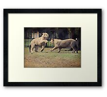 We Play 'Ruff' Framed Print