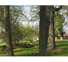 Spring Is So Beautiful 2 Photographic Print