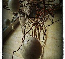Easter eggs by aandm-photo