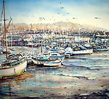 Harbour Life, Mobbing crows & raucous gulls by LorusMaver