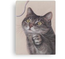 Cat Game Canvas Print