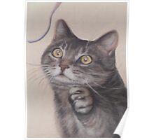 Cat Game Poster