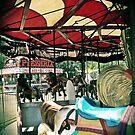 carousel 4 by Jamie McCall