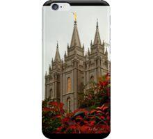 SLC Angle Berry i phone Case iPhone Case/Skin