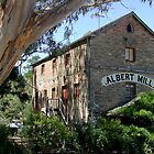 Albert Mill - Nairne by DPalmer