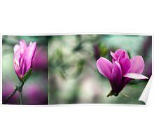 Tulip Tree Diptych 2 Poster