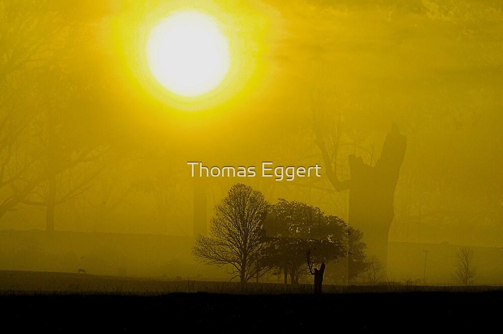 Empty....... by Thomas Eggert