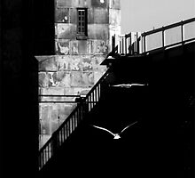 Black and White Photography - Gulls and Turret by Fojo