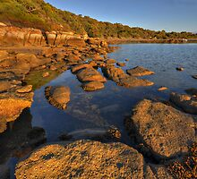 Rocks and Sea by Peter Hammer