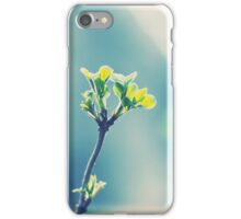 First signs of spring... iPhone Case/Skin