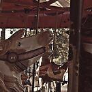 carousel 13 by Jamie McCall