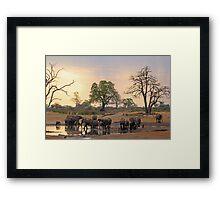 Sundowners Framed Print