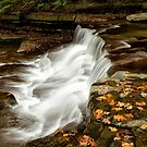 Autumn Cascade by Jeff Palm Photography