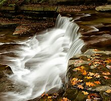 Autumn Cascade by Jeff Palm Photography