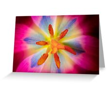 Tulip Explosion Greeting Card
