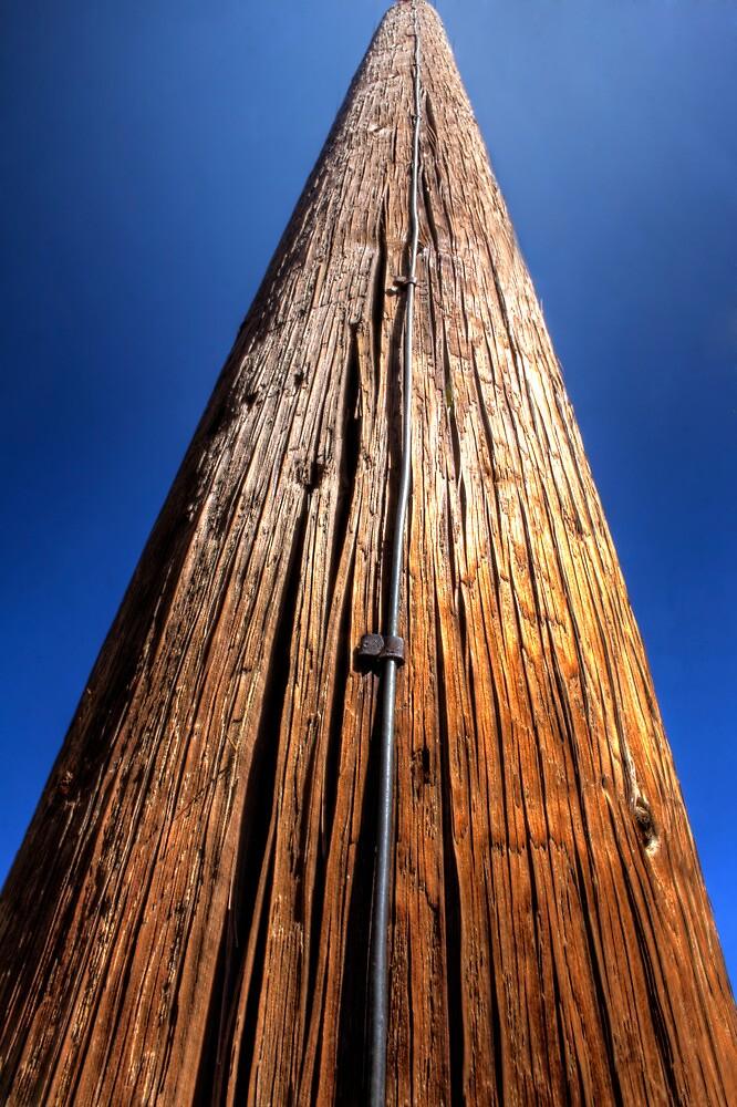 Pole by Bob Larson