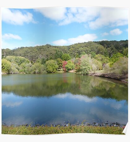 Autumn Leaves & green reflect with cloud! Mt. Lofty Botanic gdns.Adelaide. Poster