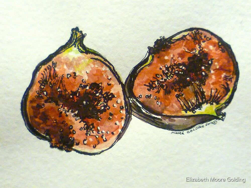 Figs: halved. Pen and wash. 2012. Ⓒ by Elizabeth Moore Golding