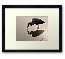 Great Blue Heron at Grover Cleveland Park, Essex Fells NJ - reflections1 Framed Print