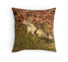 I believe...I can Fly! Throw Pillow