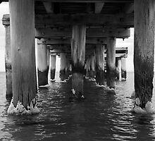 Flipside of the bridge by Shelley Eden