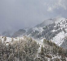 Provo Canyon Peaks by Kim Barton
