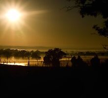 Misty sunrise ... Harden NSW by Rosalie Dale